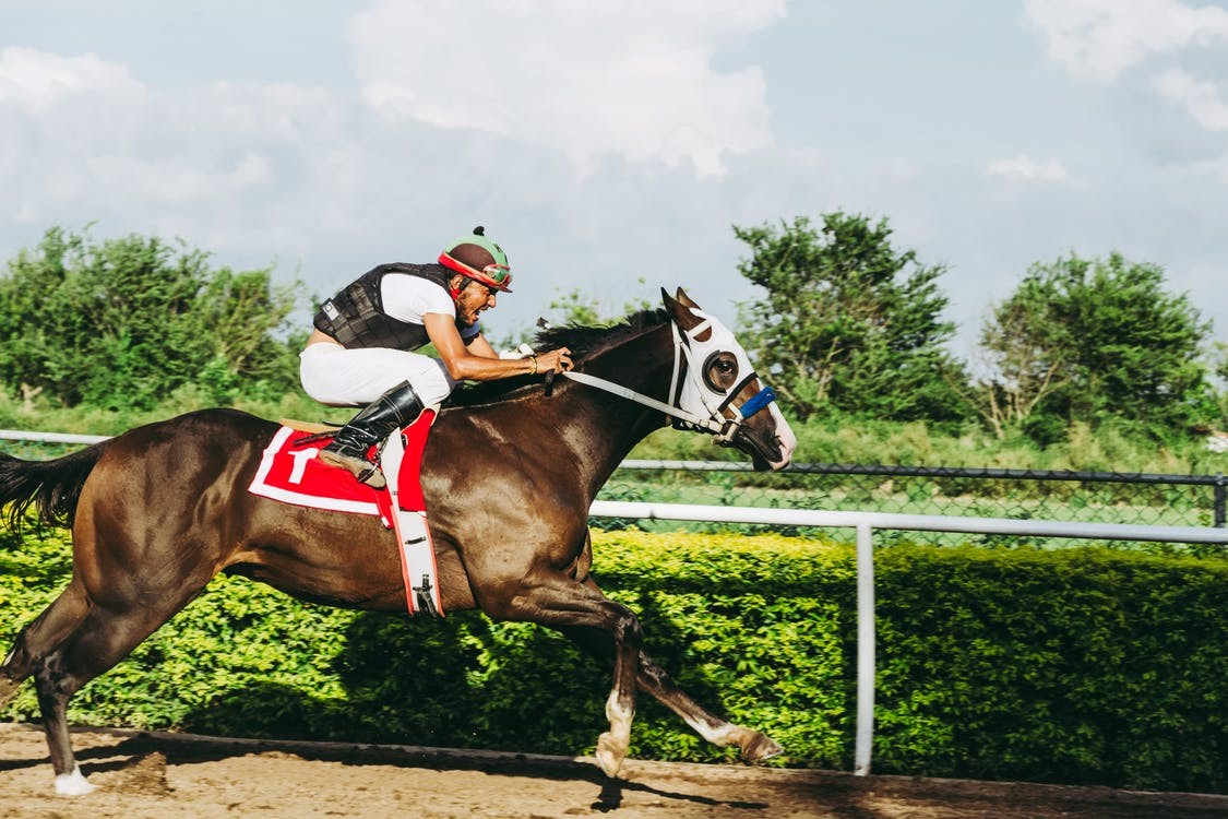 5 Tips to Increase Your horse racing betting Skills 2021
